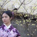 京都在住ネットでの占い師はこわいほど当たります