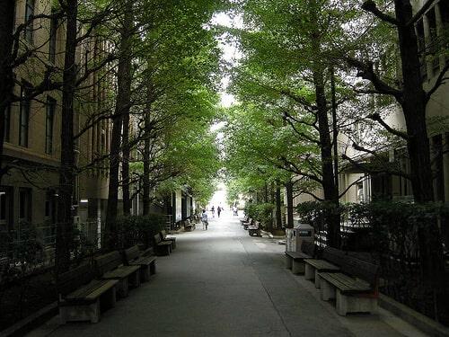 早稲田大学内