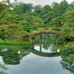 京都・北山でよく当たると噂の占いを体験してきました。