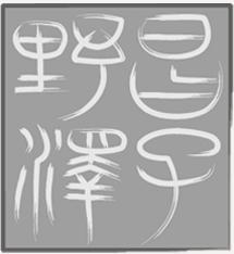 甲府市の野澤昌子 先生【野澤昌子手相占い】
