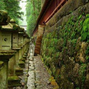 日光東照宮がある栃木県の占い