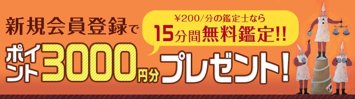 初めて会員登録した人は、3000円分のポイントをゲット