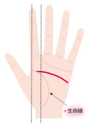 生命線との分岐点が人差し指の下