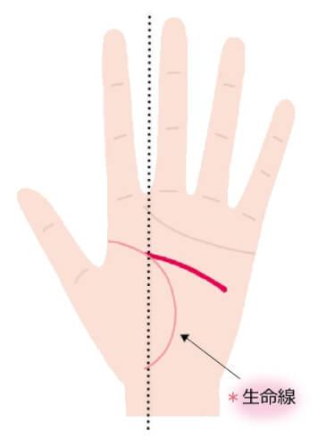 生命線との分岐点が人差し指と中指の間
