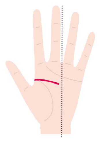 中指と薬指の間まで届かない短い知能線