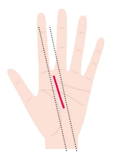 運命線が中指と人差し指の間に向かって伸びている