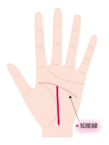中指と人差し指の間に向かって伸びる運命線が知能線で止まっている