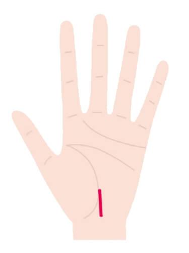起点が手首にあり、生命線が短い