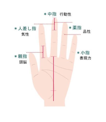 図解 それぞれの指が表すもの
