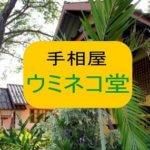 三重県四日市【ウミネコ堂】仙頭真先生の占い体験レポート