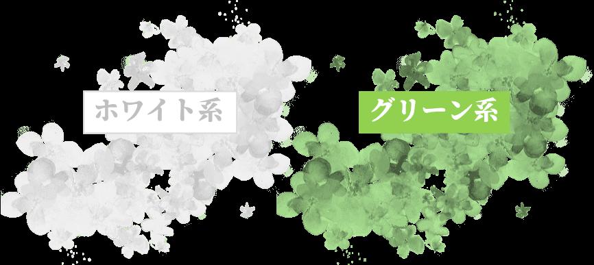 一白水星のラッキーカラーは白と緑