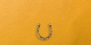 馬蹄のモチーフがついた黄色のレザー財布