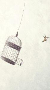 小さな鳥が鳥籠から飛び出したその瞬間を描いたイラスト待受