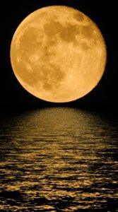 真夜中の真っ暗な夜空に浮かぶ金色の月(満月)と海の待受