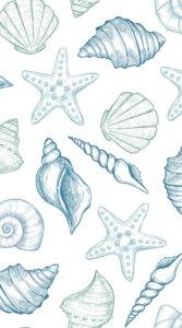 色々な貝殻を淡い緑や青色で描いたおしゃれなイラスト待受
