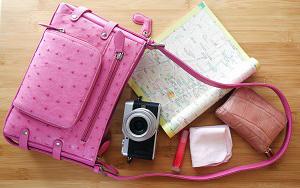 バッグの中に入っていたカメラ・地図・ハンカチ・財布などの中身