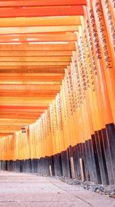 伏見稲荷大社の千本鳥居をローアングルから撮影した写真待受