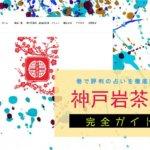 神戸岩茶荘で羅舟伯先生の眼診を体験しました【レポ・占い潜入調査】