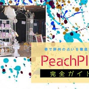 新潟『PeachPlan』完全ガイド【特徴解説・占い潜入レポ】