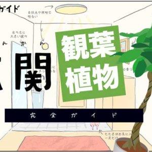 genkan-kanyoushokubutsu-header