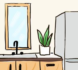 キッチンに観葉植物