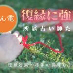 みん電『復縁・縁結び』が当たるオススメ先生【保存版】