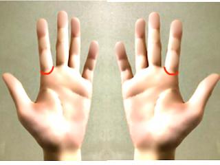 両手のソロモンの環