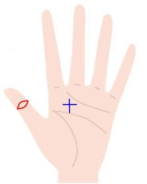 親指の仏眼相と神秘十字線を同時に持つ人の手相