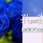 ヴェルニ『孔雀』完全ガイド【口コミ・鑑定レポ・評価】